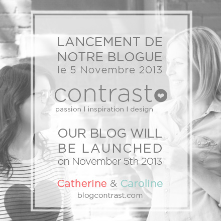 Lancement de notre blogue le 5 novembre 2013  Our blog will be launched on November 5th 2013